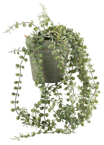 Изкуствено растение SVENN Ø11xВ46+саксия